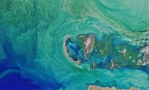 ocean blob captured by NASA satellite